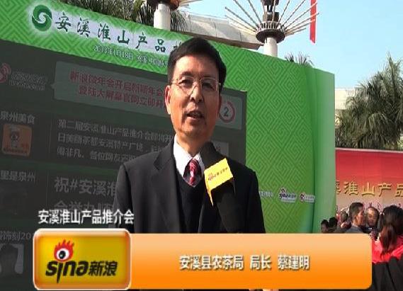 安溪县农茶局局长蔡建明新浪专访