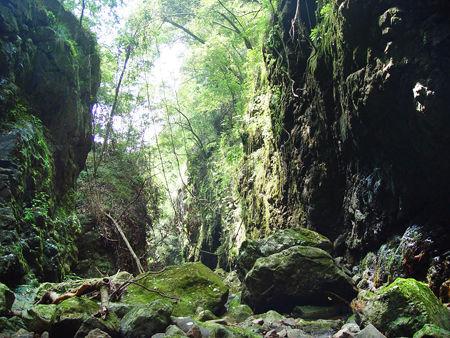 云中山省级自然保护区