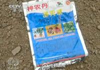 农民用剧毒农药种生姜 称自己吃的不用药