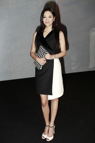 徐静蕾身着Dior2013早秋小礼服出席秀场-徐静蕾任顶级品牌合作伙伴 图片