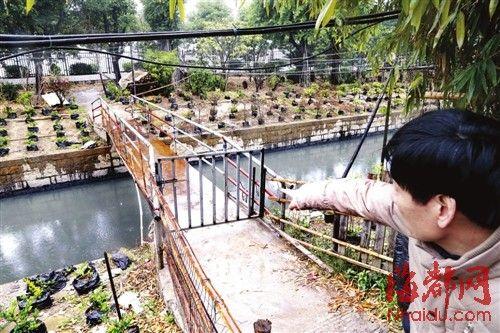 村民质疑内河没护栏
