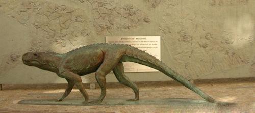 叠恐龙的步骤图