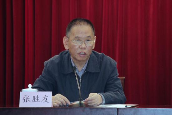 中国作协书记处原书记、报告文学委员会主任张胜友在会上发言