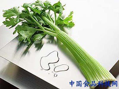芹菜茎横切面结构图