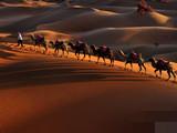 腾格里沙漠奇景