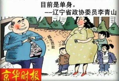 政协委员一妻四妾