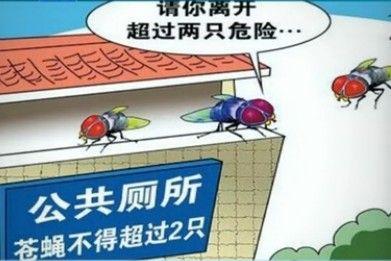 公厕将限制苍蝇数