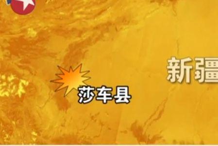 新疆莎车县发生严重暴恐案 数十暴徒被毙